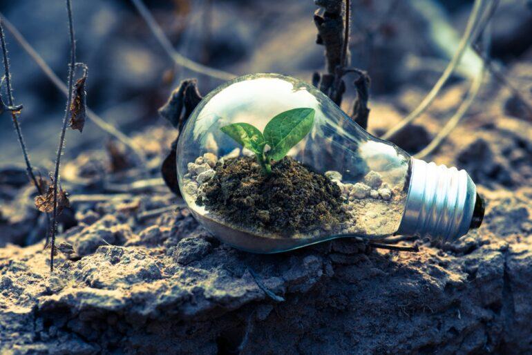 Imagem ilustrativa da solução Alunos podem aprender sobre mudanças climáticas com gincana virtual