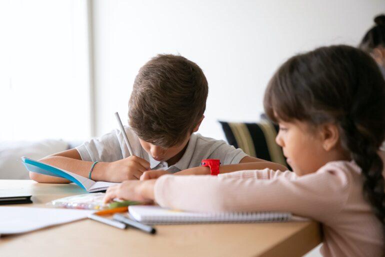 Imagem ilustrativa da solução O que alunos com e sem deficiência aprendem ao conviverem na mesma escola?